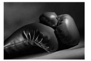 Canadian MMA Law Boxing Glove Photo