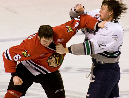 hockey fight picture