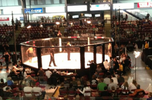 BC Amateur MMA Rules Adopted Photo