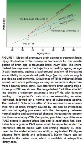 Figure 1 TBI Aging Study